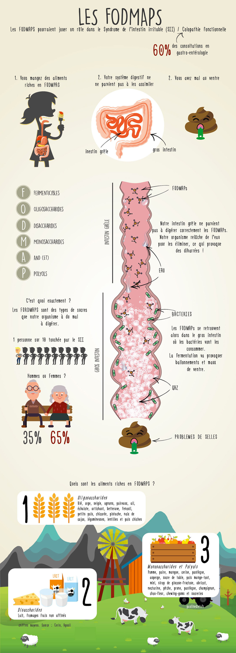 FODMAP, le nouvel ennemi des gluten free ?! - ©Pauline Pied