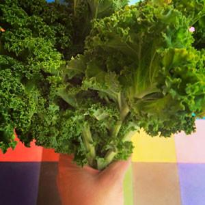 Fée Nature, curiosité healthy et gluten free / 2