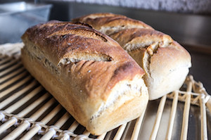 Et Dieu inventa la machine à pain sans gluten /3