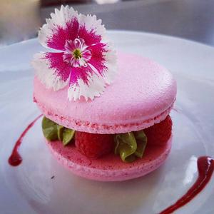 Les macarons végétaux sans gluten, ni lait ni oeufs ©VG Pâtisserie