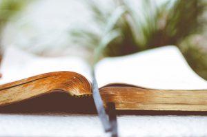 Que lire quand on se pose des questions sur le gluten ? ©Ben White