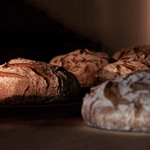 Le guide des boulangeries sans gluten en France ! ©Le Pain de Beauvoir