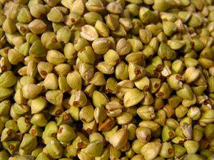 Est-ce qu'il y a du gluten dans le blé noir ?! Graines de sarrasin ©Christa