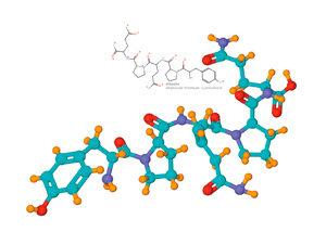 Qu'est-ce que la gliadine ? La science avance ©AAPC