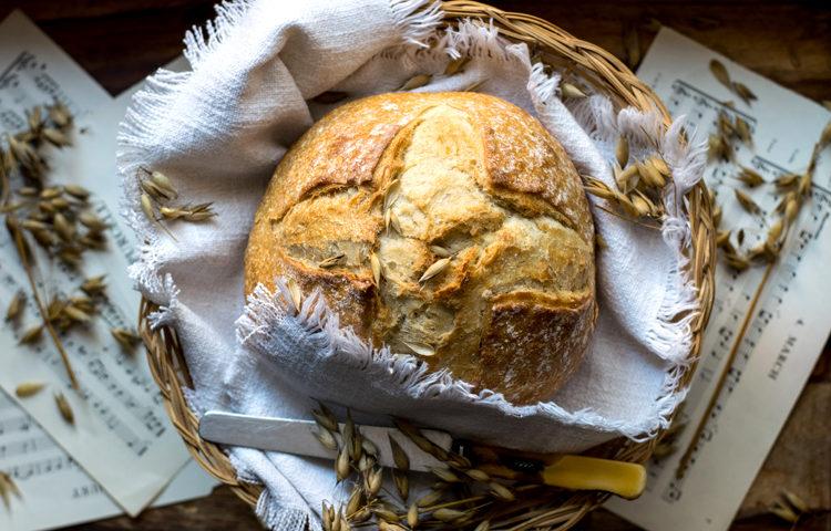 Du blé pauvre en gluten : de nouveaux espoirs ©Monika Grabkowska