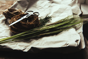 Du blé pauvre en gluten : de nouveaux espoirs - Du blé modifié ©Joanna Kosinska