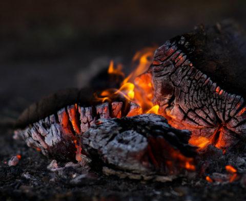 Les super pouvoirs du charbon contre les prouts ! ©Wil Stewart
