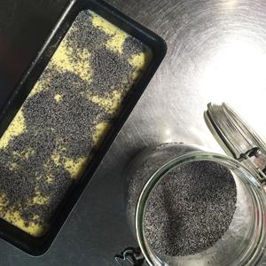 Délicieux cake citron-pavot sans gluten ni lactose - On n'oublie pas le pavot ©Because Gus