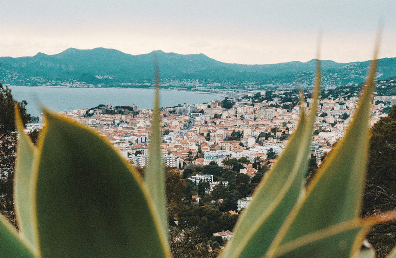 Où manger sans gluten sur la Côte d'Azur ? ©Sergiu Jurca